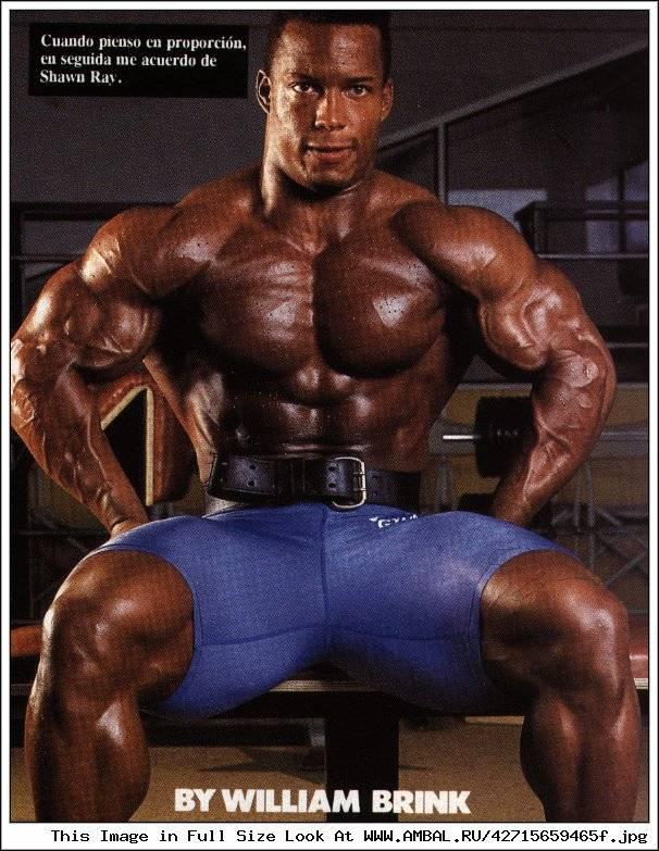 ✅ шон рей мои первые пять кило мышц. шон рей. история успеха, программа тренировок. программа тренировок шона рея - elpaso-antibar.ru