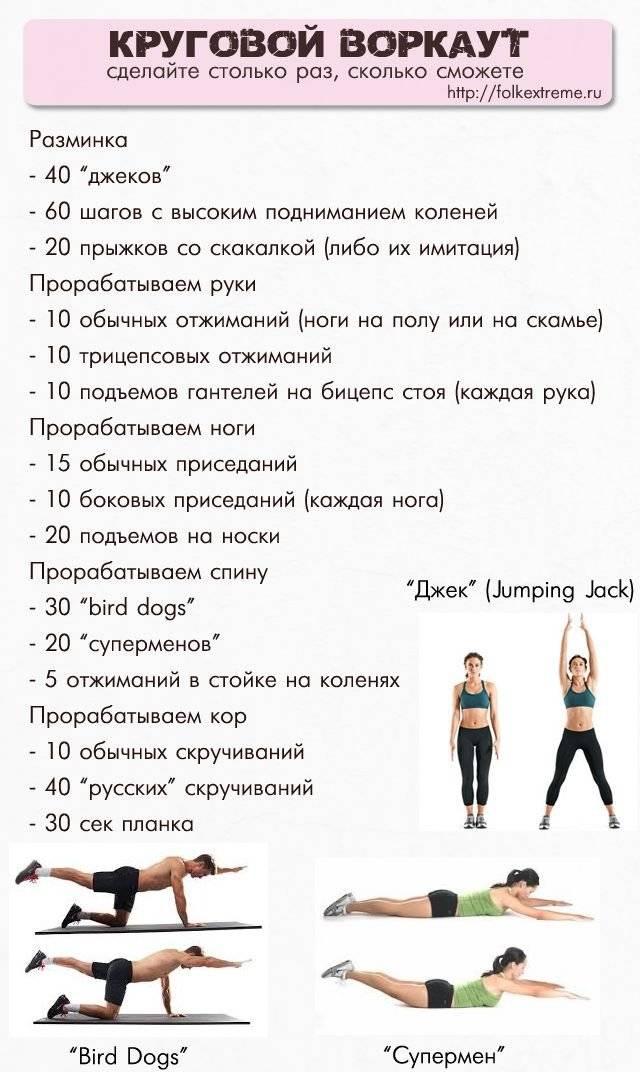 Тренировка для похудения в зале: комплекс упражнений. программа тренировок для похудения
