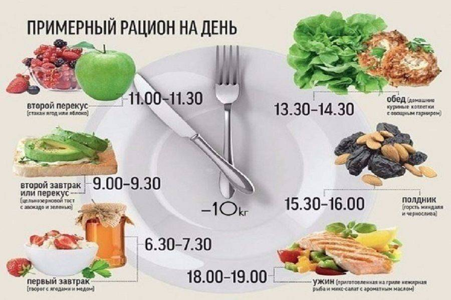 Сколько раз в день нужно есть и как рассчитывать размер порций