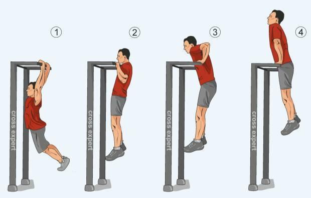 Изучаем свое тело: какие мышцы работают на гребном тренажере