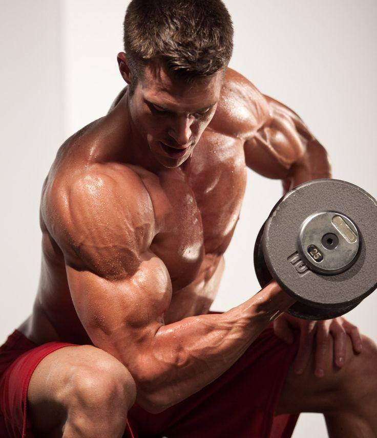 Читинг. технология накачки мышц.  читинг. технология накачки мышц.