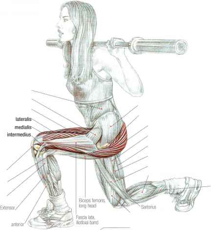 Выпады со штангой на плечах для ударной прорисовки ног