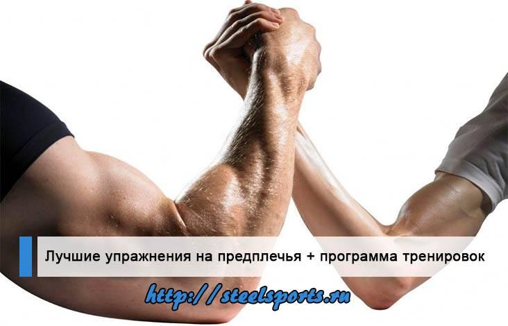 10 лучших упражнений для увеличения силы хвата » спортивный мурманск