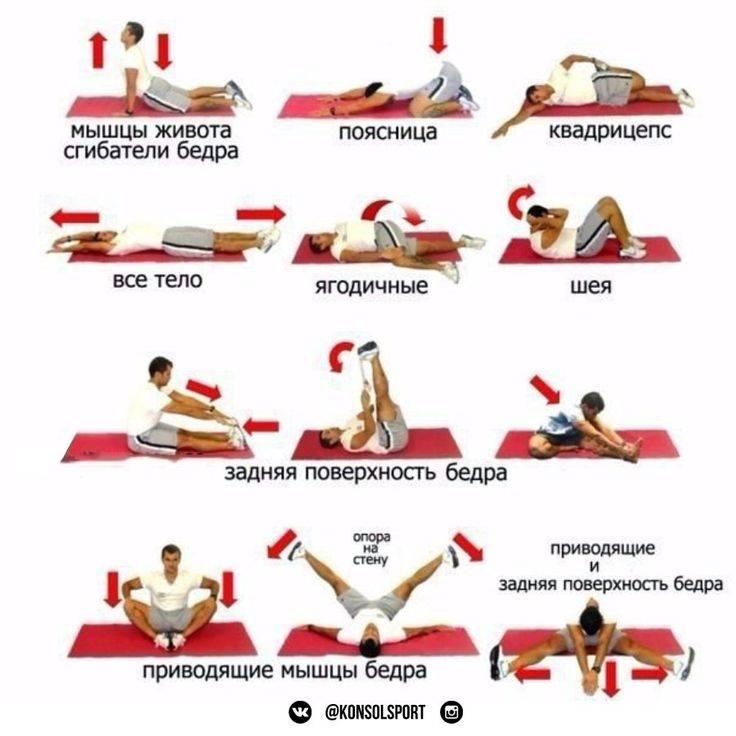 Растяжка для начинающих в домашних условиях: упражнения с фото