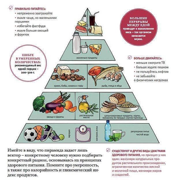Можно ли есть сало на диете: считается ли оно диетическим продуктом или нет, вредит ли организму во время похудения