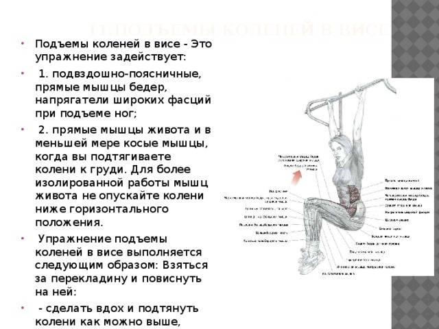 Подъем ног в висе — качаем три мышцы пресса одновременно