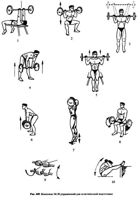 15 упражнений для девушек с гантелями для мышц всего тела