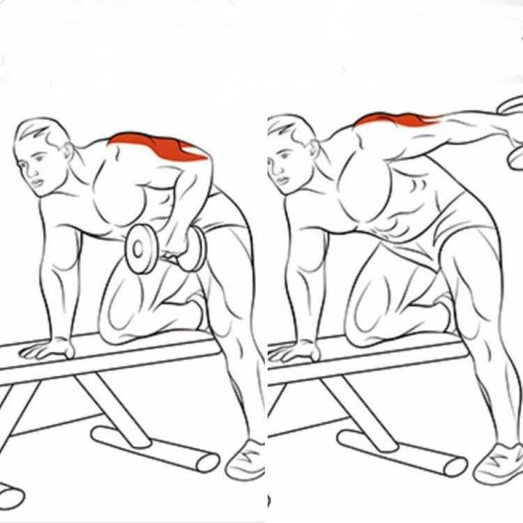 Тренировка трицепсов с гантелями: 4 упражнения.