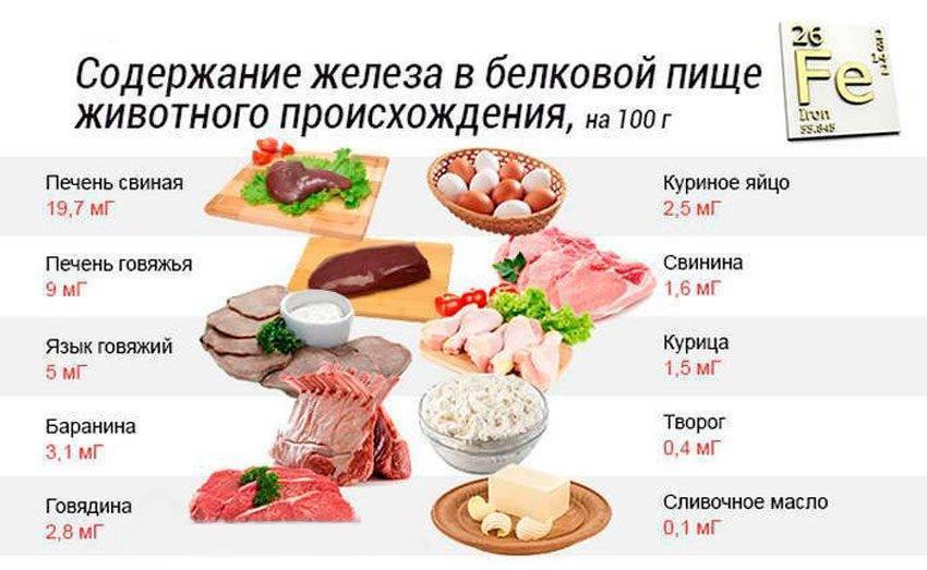 Продукты, богатые железом [список] :: здоровье :: рбк стиль