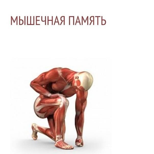 Урок 10 что такое мышечная память и как ее развить?