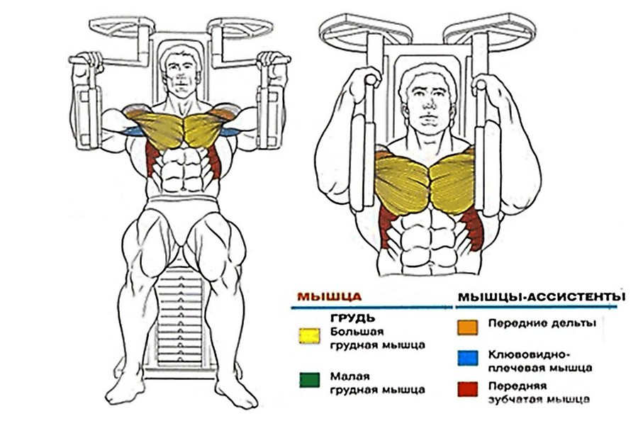Сведение ног в тренажере - как делать и какая техника