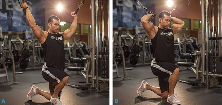 Топ 10 лучших упражнений на бицепс с гантелями, штангой, гирями для тренировки бицепсов дома и в зале