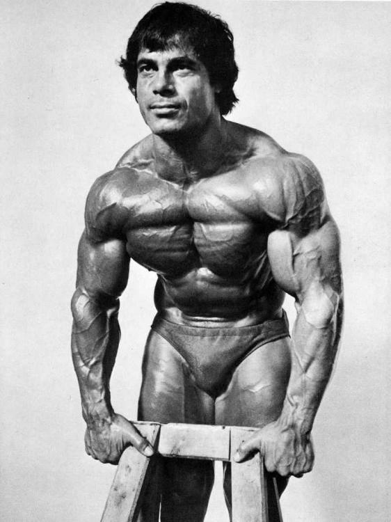 Франко коломбо: невероятное развитие верха груди и спины   спорт и здоровье