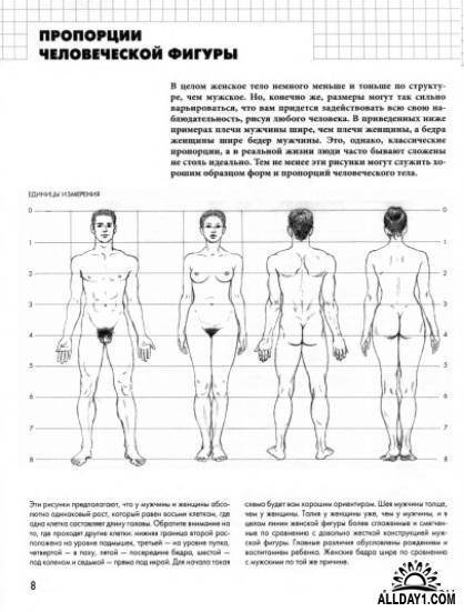 Идеальные фигуры: самые красивые мужские и женские формы