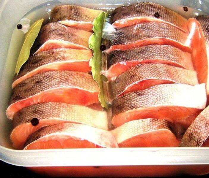 Как солить и мариновать рыбу — 5 простых рецептов засолки рыбы