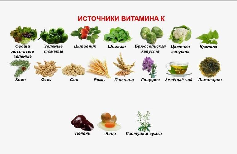 Топ-39: продукты содержащие витамин c в большом количестве: список лучших источников для здорового рациона