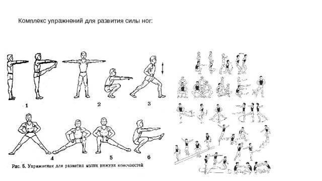 Силовая тренировка, программа тренировок на силу