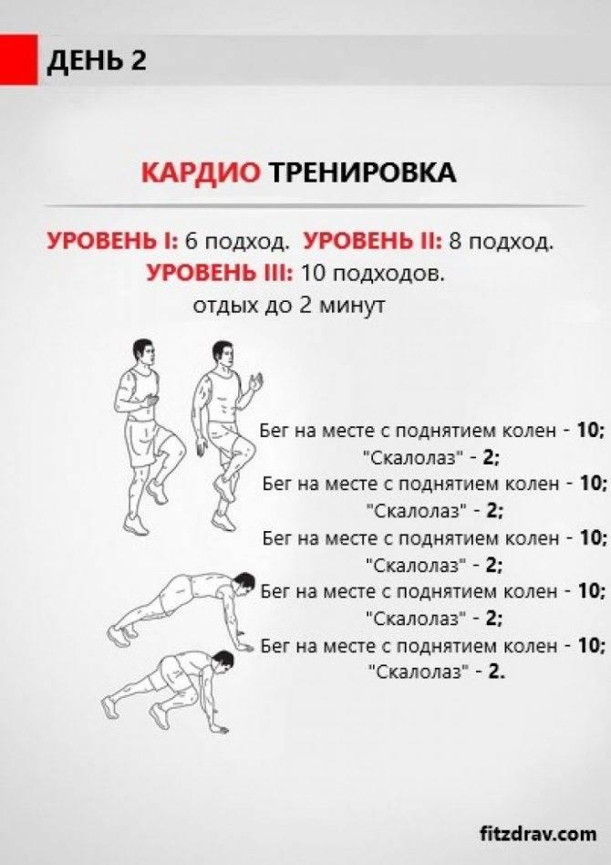 Кардио-тренировки для сжигания жира