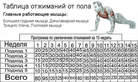 Сколько подходов и повторений делать для набора мышечной массы