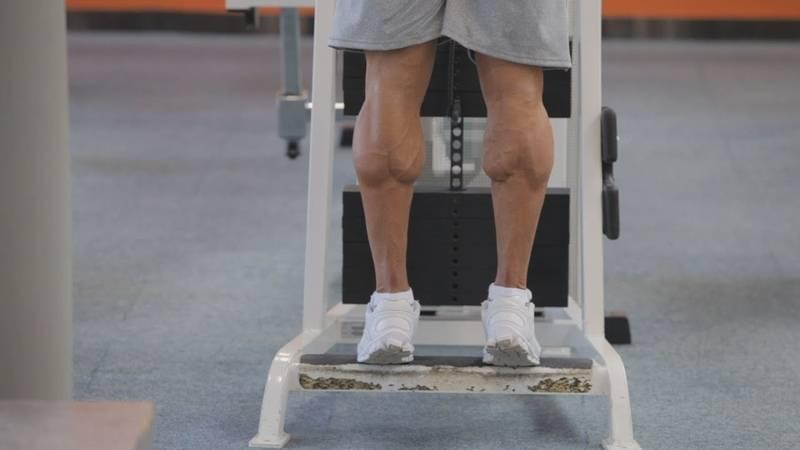 Как накачать икры ног (голени)? все тонкости и секреты!