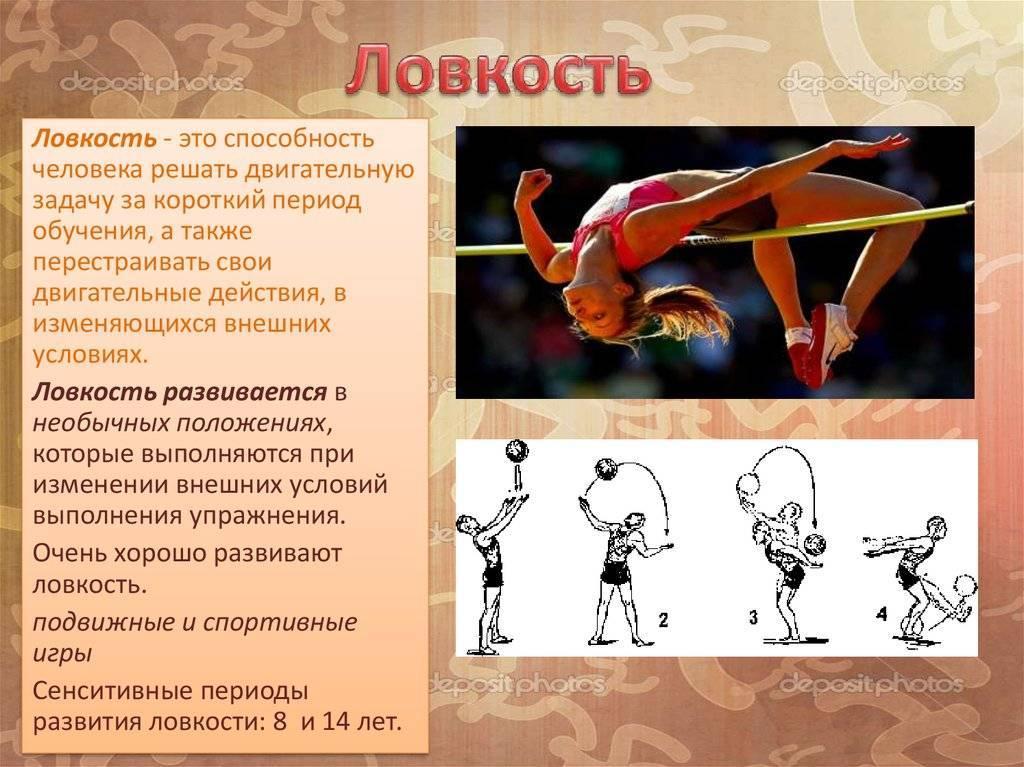 Виды гибкости: характеристика и упражнения на развитие