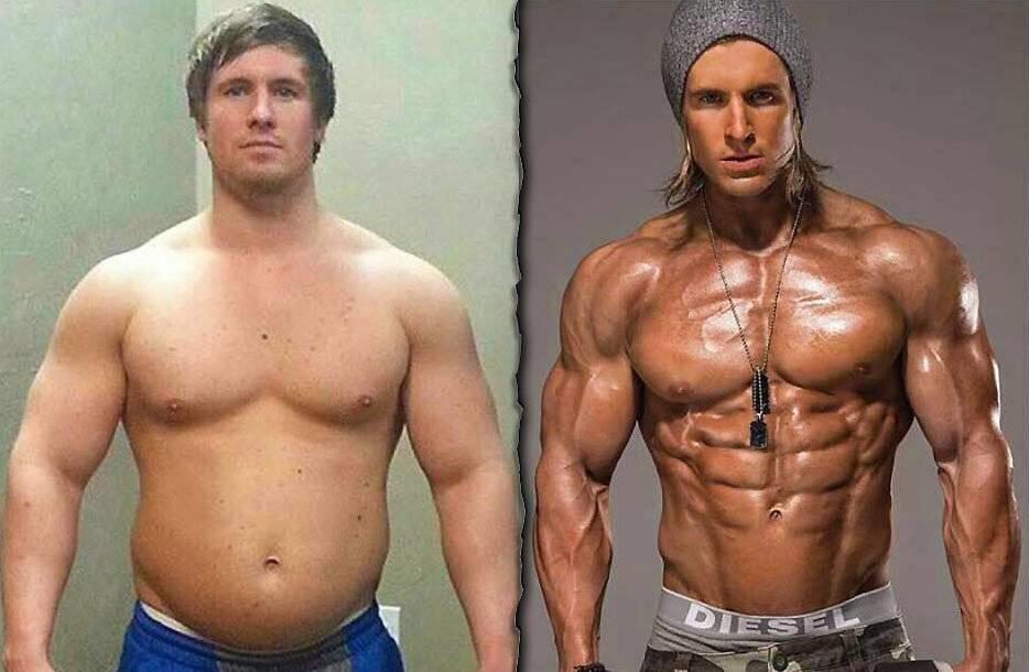 Как перегнать жир в мышцы?
