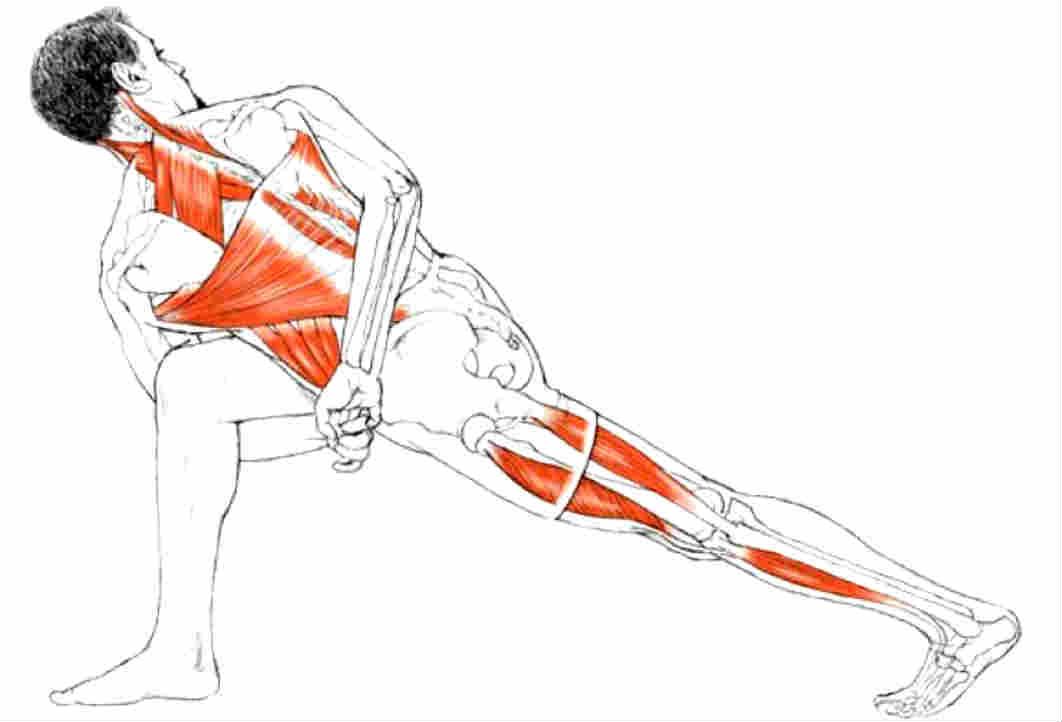 10 упражнений для растяжки спины и позвоночника