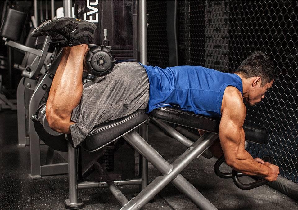 Тренировка ног на массу в тренажерном зале, программа тренировок