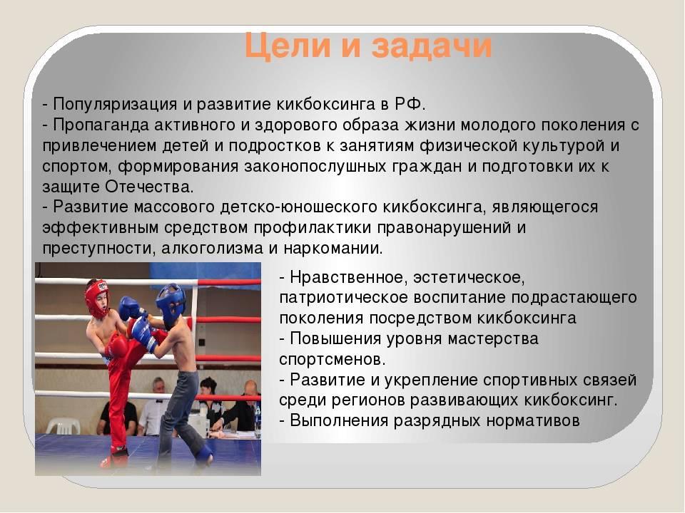 Лучшие стили боевых искусств для самообороны | brodude.ru