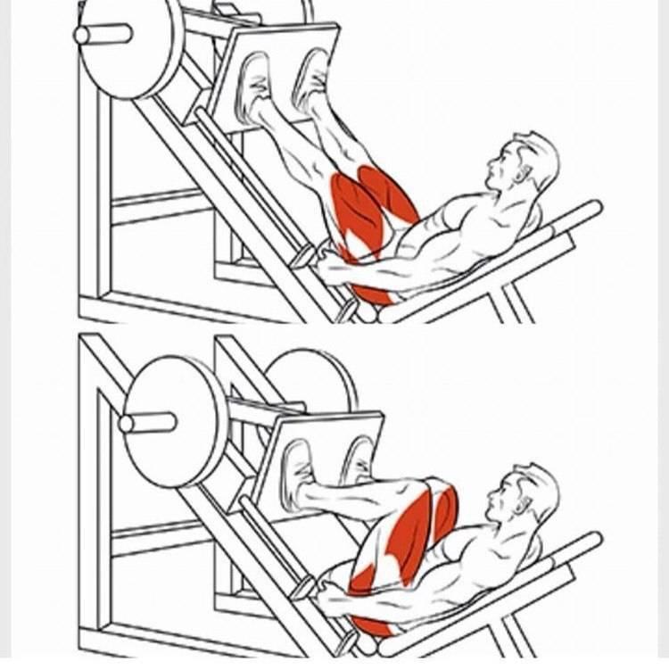 Наклонный жим ногами лежа на тренажере: 4 варианта постановки ног