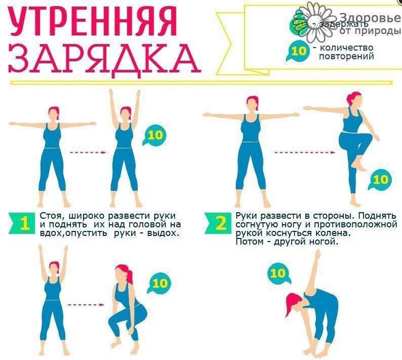 Комплекс утренней гимнастики (зарядки): что входит в занятие, упражнения, нагрузка, дыхание