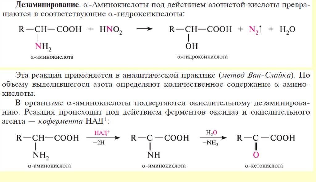 Зачем в бодибилдинге нужно принимать аминокислоты
