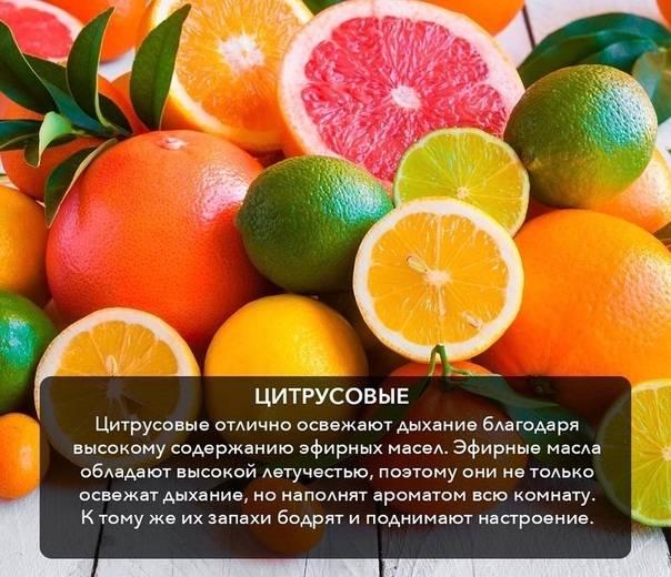 Как правильно есть фрукты - до и после еды - по этикету?