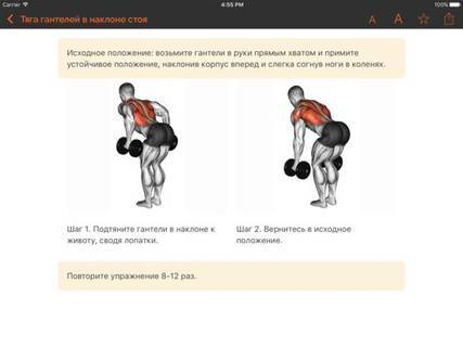 Тяга штанги в наклоне обратным хватом: техника выполнения