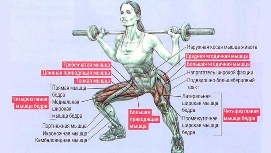 Полуприсед – проверенное упражнение для разгона силовых показателей в спорте