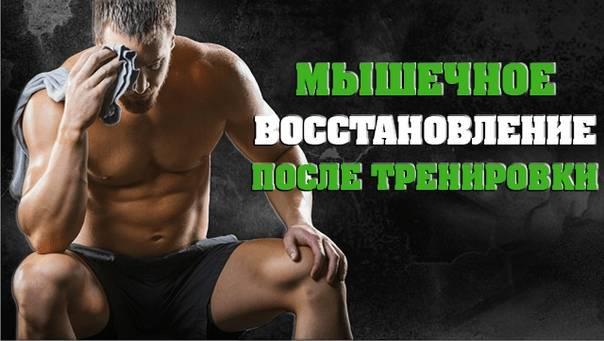 Топ 5 спортивного питания для восстановления после тренировок