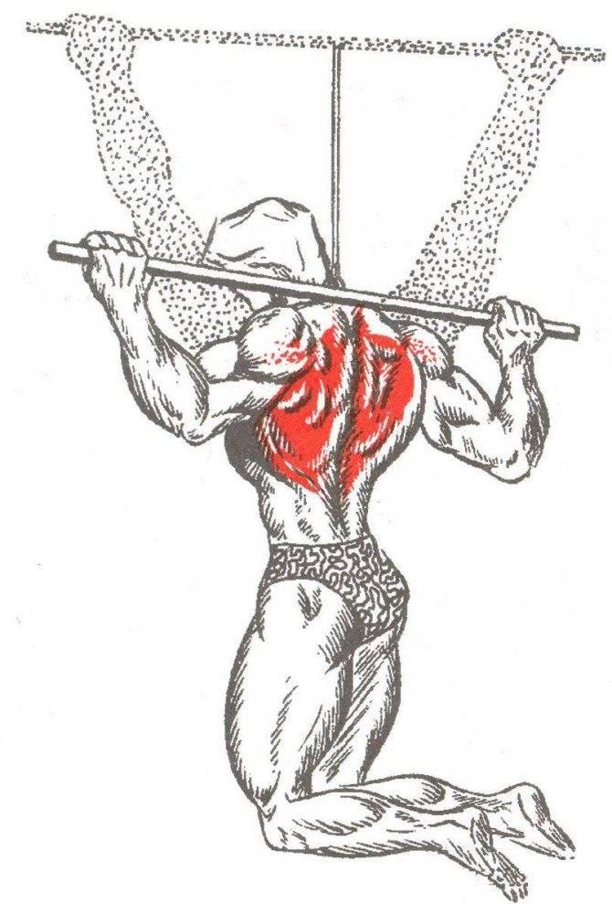 Подтягивания для спины. техника и разница между обычными подтягиваниями