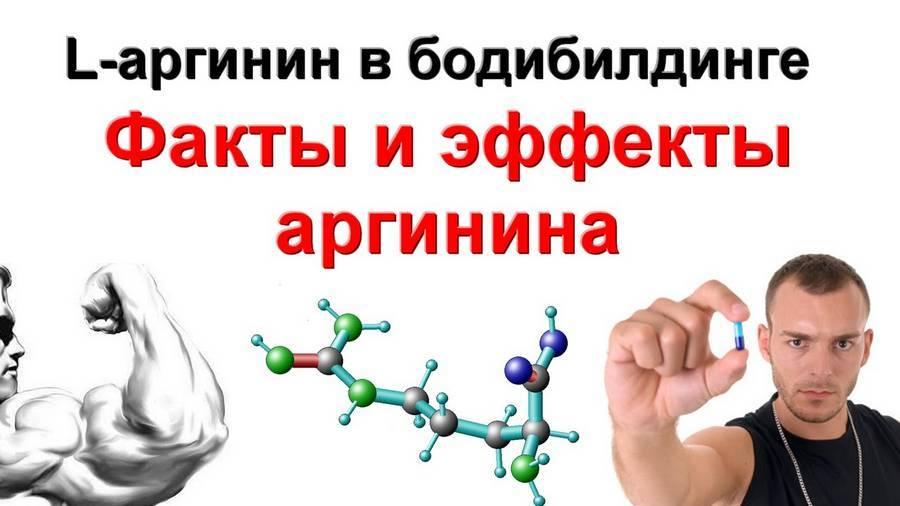 Аргинин в бодибилдинге. свойства и сопособ применения   muscleprofit