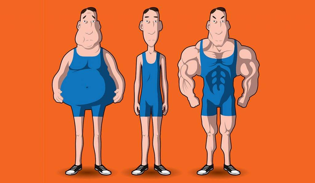 Мезоморфный тип телосложения — что нужно знать