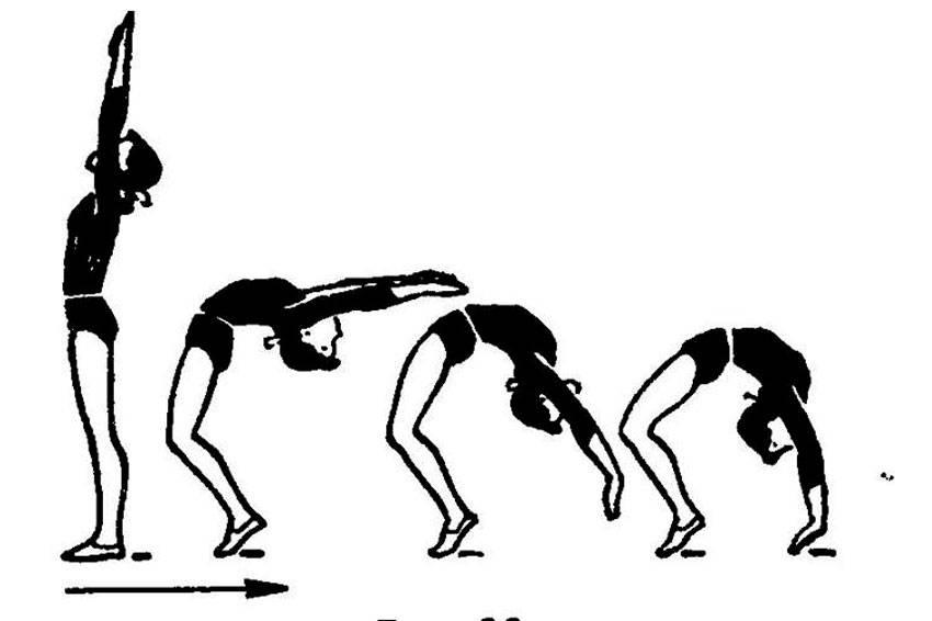 Упражнение мостик: как научиться делать гимнастический мост