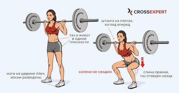 Присед для девушек - всё о спортивных тренировках