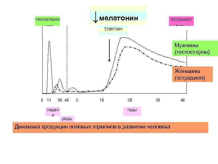 Тестостерон у женщин, как повысить тестостерон - лечебно-диагностический центр нейрон (таганрог)