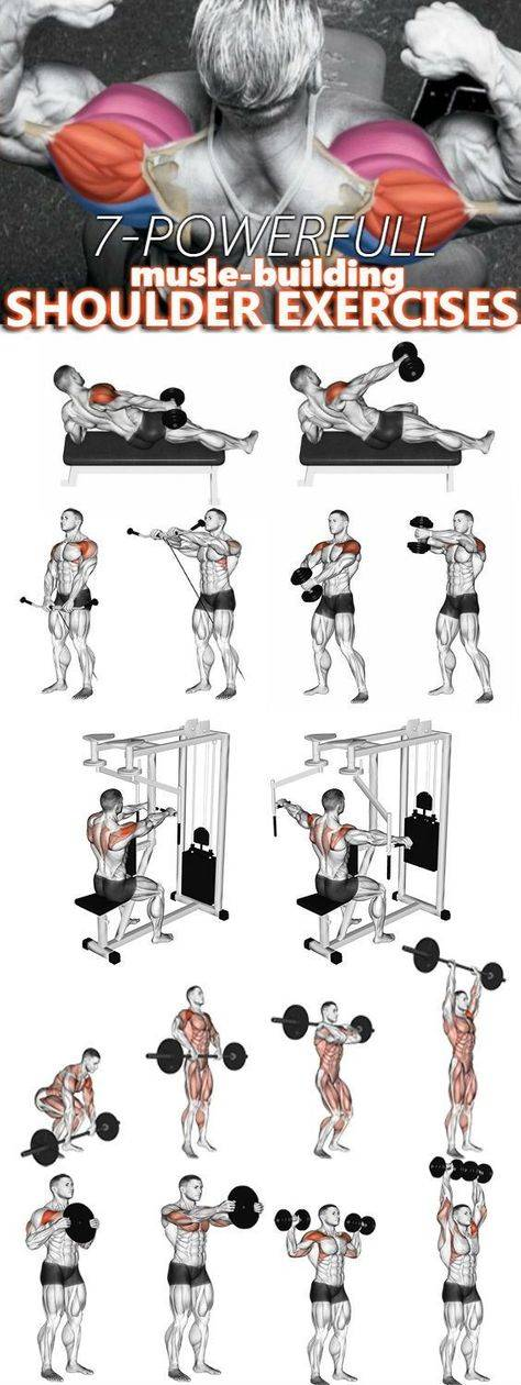Упражнения на плечи в тренажерном зале