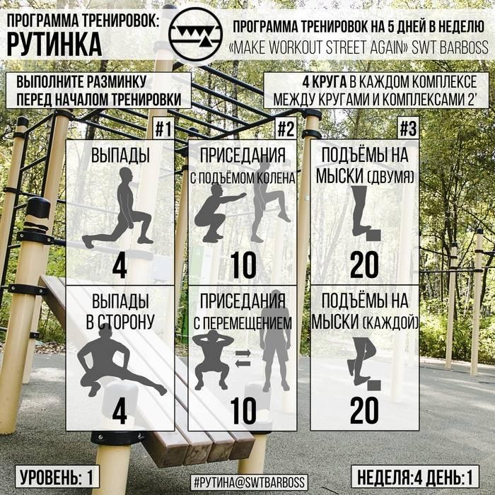 Программа тренировок на турнике и брусьях: базовые упражнения