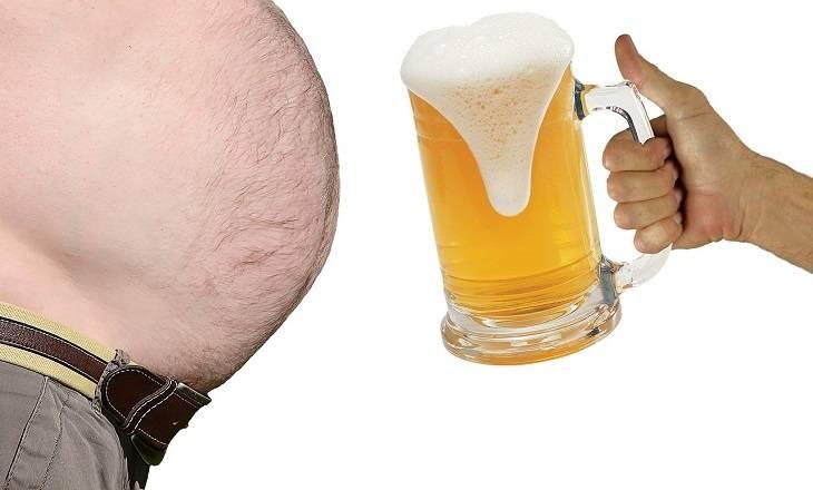 Вся правда про «пивной живот» — pivo.by