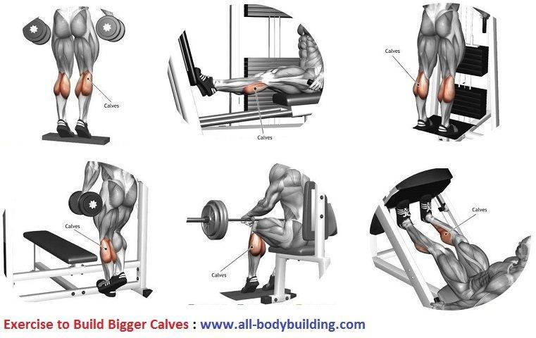 Комплекс эффективных упражнений для тренировки ног