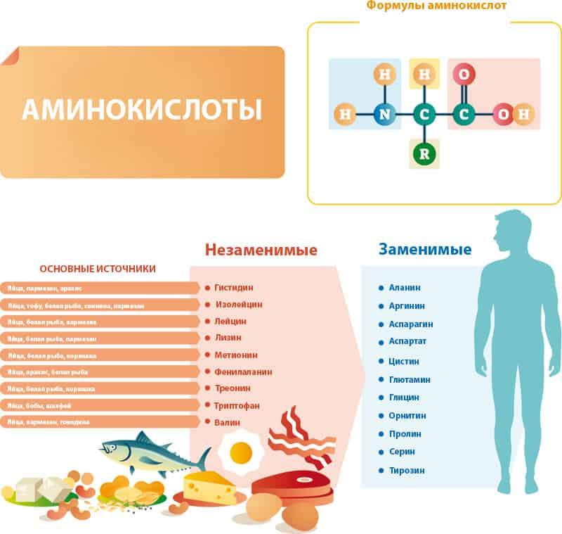 Разница между цистеином и цистином - напитки и еда 2021 - blog be healthy