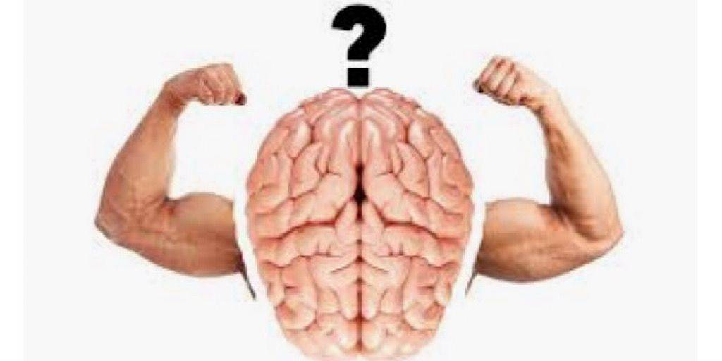 Нейромышечная связь мышц с мозгом —что это? как развить и улучшить?
