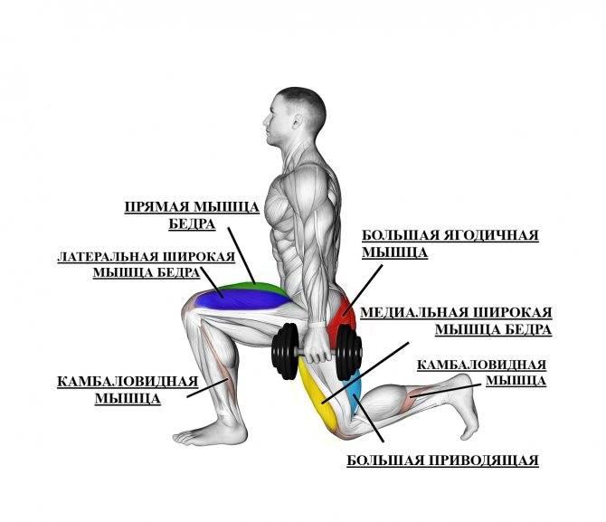 Приседания сумо (присед с широкой постановкой ног) — техника | power-body.ru