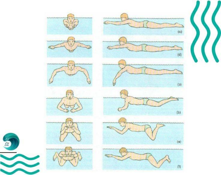 Как правильно плавать брассом?